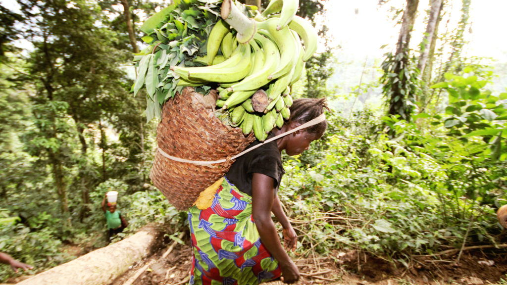 This image has an empty alt attribute; its file name is DRC-Woman-goes-to-the-market-Photo-Christian-Chatelain-1920x1080px-1024x576.jpg