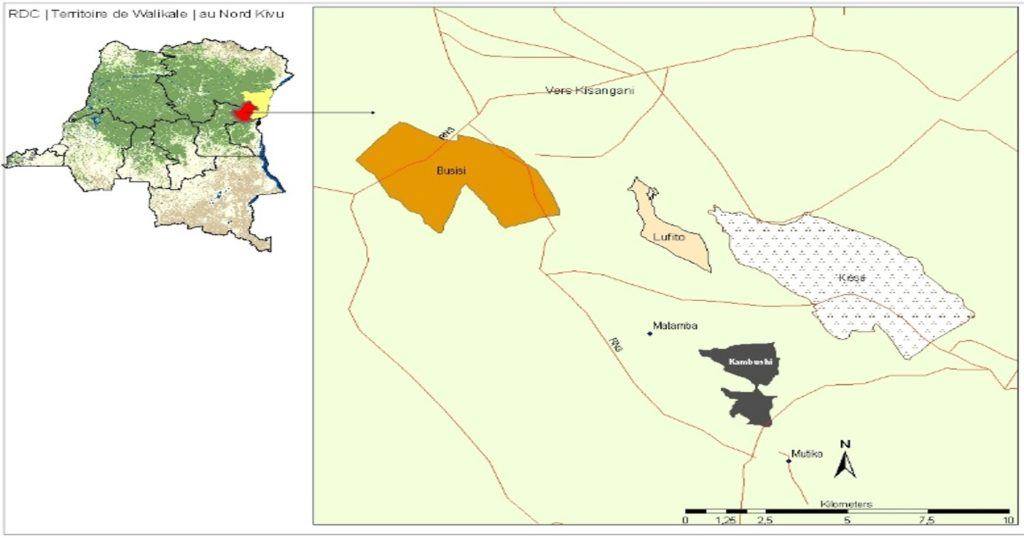 This image has an empty alt attribute; its file name is Map-Kisimbosa-DRC-1024x538.jpg
